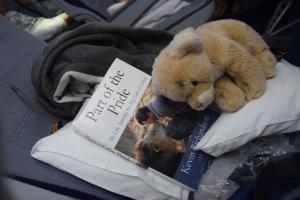 """Reissulukemista, matkamuisto edelliseltä matkalta ja Honolulu-gepardin """"oma"""" istuin"""